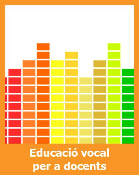 Educació vocal per a docents